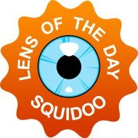 Seth Godin's Squidoo Lens of the Day