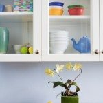 How To Organize Your Kitchen Now